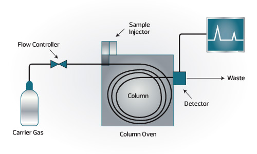 Diagram of a Gas Chromatograph
